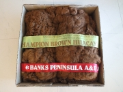cookie-et-fleece-champion-brown-banks-pen-2012