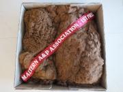 cookies-et-1st-in-class-fleece-sheffield-2012