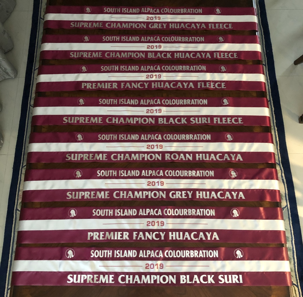 SI Colourbration Supreme Awards